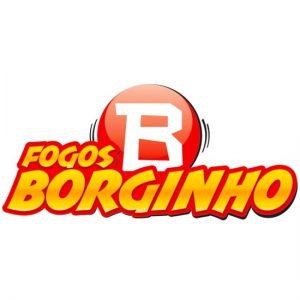 LOGO BORGINHO - SITE
